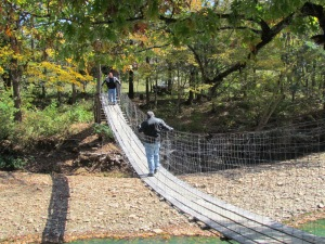 swinging bridge oark