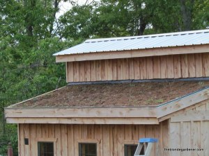 May 2013--living roof planted  https://theblondegardener.com/2015/08/01/chicken-coop-with-living-roof/