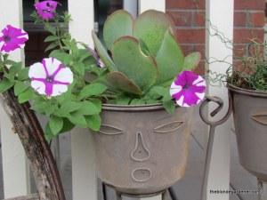 petunia, face pot, container
