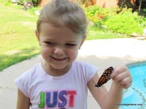 hallie, butterfly