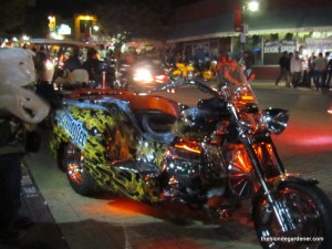 motorcycle, bikes, blues and bbq