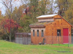 chicken coop in fall
