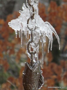 ice on rain chain