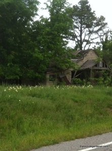 old house and lilies