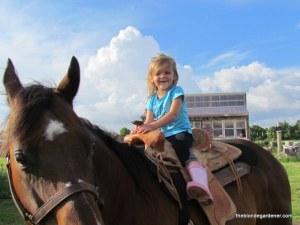 Hallie 4 / horse