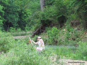 steele creek painter