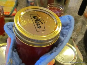 wild plum jelly canning