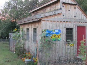 August 2014--chicken coop with a living roof  https://theblondegardener.com/2015/08/01/chicken-coop-with-living-roof/