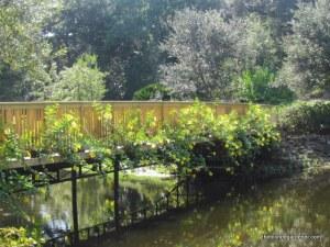 Bellingrath Garden