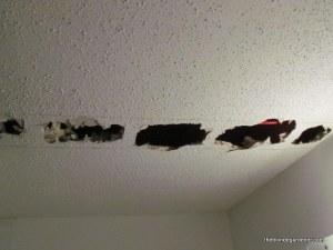 lake house ceiling