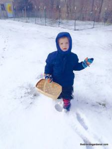 luke 2years old feb 2015 snow