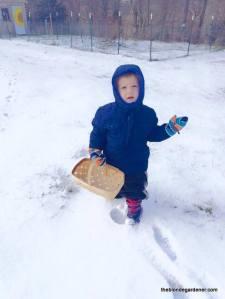 luke 2years old feb 2015 snow