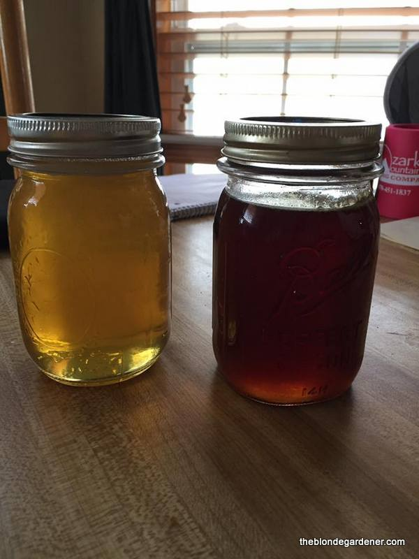 honey-harvest-spring-and-fall