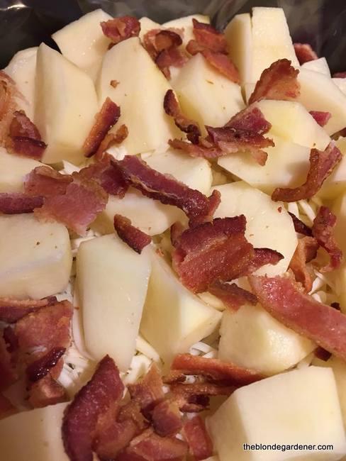 crockpot potatoes2